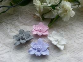 Orchideetjes 3 st.