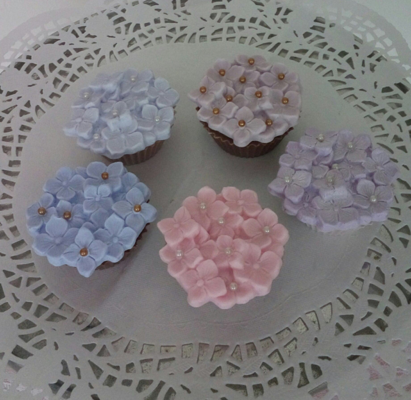 cup-cake hortensia