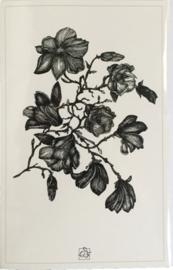 Anna Feer wenskaart  - Magnolia