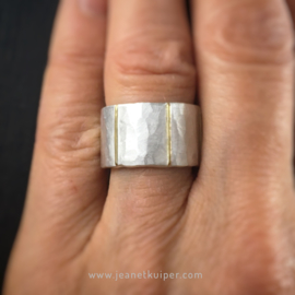 ring met verticale gouden lijnen