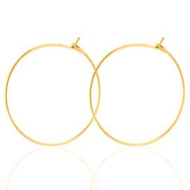 RVS oorbellen 25mm goudkleur, per paar 66630