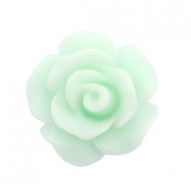 Roosje 10mm matt light mint green 34791