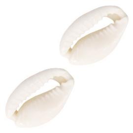 Kauri schelp kralen naturel white 60434