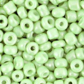 Rocailles 4mm 6/0 soft mint green 60227