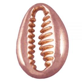 Kauri schelp kralen/bedel rosé goudkleur 11x9mm 1959