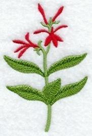 Handdoek of Gastendoekje met wilde Lobelia (Cardinal Flower)