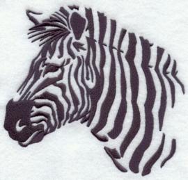 OS12 - Zebra