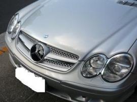 Mercedes R230 SL  AMG Look Grill Sportgrill  bj 2001-2011 Zilver/chroom