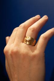 Leen Heyne ring  nr. 1