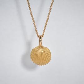 Katinka Neuner  gouden schelp hanger ( kokkel )