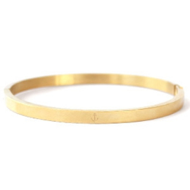 Bangle Goud Ankertje RVS  [1179]