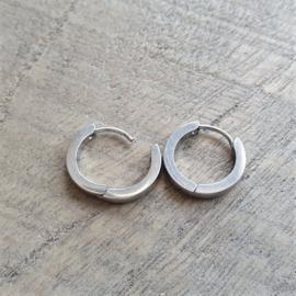 Roestvrijstalen Creolen 16 mm  [8430]