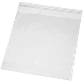 Cellofaan zakjes (16 x 16 cm - 25 stuks)