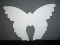 Vlinder  (32x42x3cm)