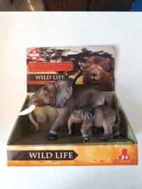 WILDLIFE Olifant