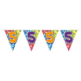 Vlaggenlijn mini  Birthday Blocks 5 Jaar - 3 meter