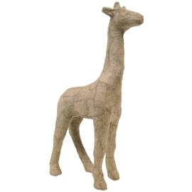 Giraffe (S) AP608