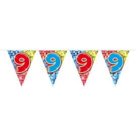 Vlaggenlijn mini  Birthday Blocks 9 Jaar - 3 meter