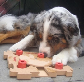 Dog MIXMAX hout