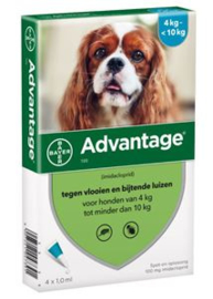 Advantage Hond 100 4 Pipet