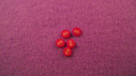 Tomaatschijfjes 10 st.