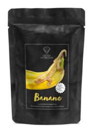 Gecko Nutrition banaan ( 50 gram )