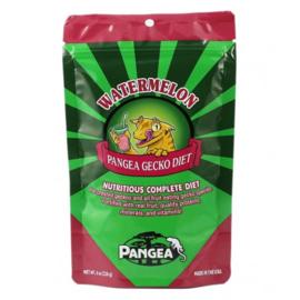 Pangea Gecko food Watermeloen / Mango 57 gram
