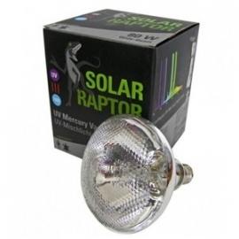 Solar Raptor