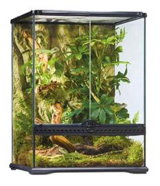 Exo Terra Glass Terrarium Wide 45x45x60cm ( alleen afhalen )
