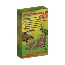 Lucky Reptile Earthworms 10 gram