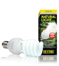 Natural Light 13 watt