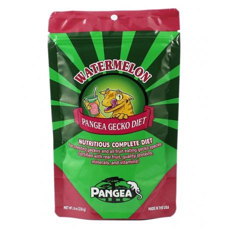 Pangea Gecko food Watermeloen / Mango 454 gram