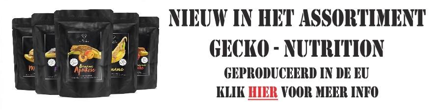 gecko-nutrition