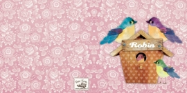 Geboortekaartje Robin | 2e kind vogelhuis zusje en broer