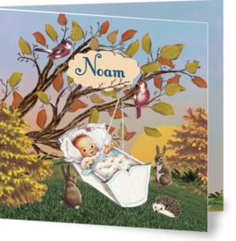 Geboortekaartje Noam | wiegje herfst