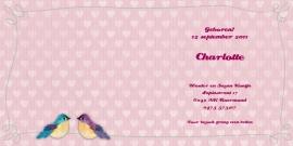 Geboortekaartje Charlotte | vogelhuisje roze