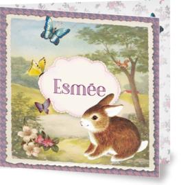 Geboortekaartje Esmée | lief konijntje