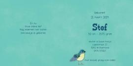 Geboortekaartje Stef | 2e kind vogelhuis broertjes