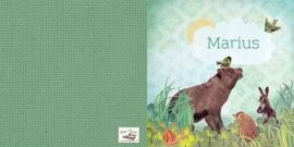 Geboortekaartje Marius | beer egel konijn jongen