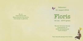 Geboortekaartje Floris | broertje zus wiegje