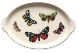 Schaaltje vlinders