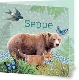 Geboortekaartje Seppe