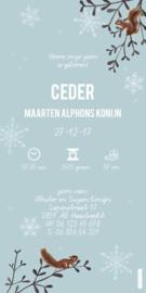 Geboortekaartje Ceder | Winterlandschap