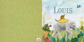 Geboortekaartje Louis , kleine olifant in landschap