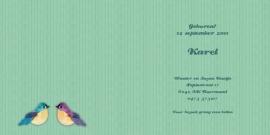 Geboortekaartje Karel | vogelhuisje blauw
