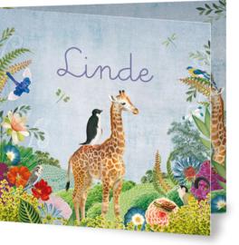 Geboortekaartje Linde, kleine giraffe in landschap