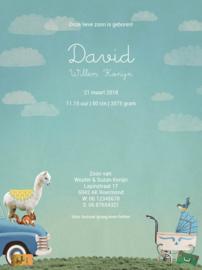 Geboortekaartje David | dieren in blauwe pick-up liggend