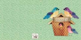 Geboortekaartje Sterre | 2e kind vogelhuis zusjes