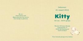 Geboortekaartje Kitty | retro baby meisje