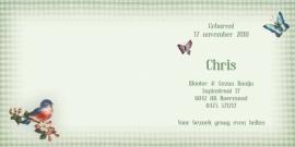 Geboortekaartje Chris | lief konijntje